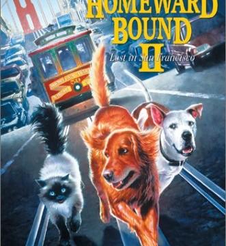 Neuveriteľná cesta 2 (1996)