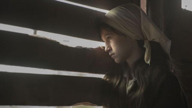 Dara iz Jasenovca (2020)