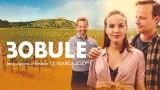 3Bobule online film