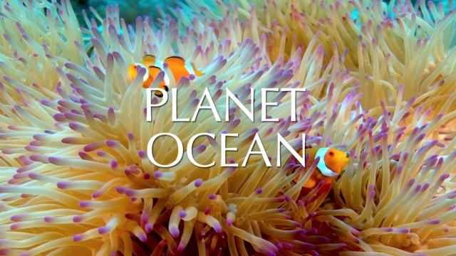Planeta oceán online film