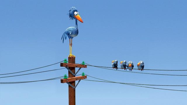Pre vtáčikov